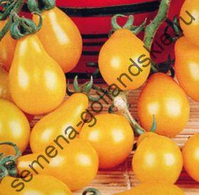 "Томат сорт ""ЖЕЛТАЯ ГРУША"" (Yellow pear) 10 семян"