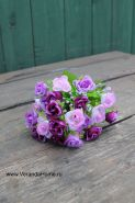 Розочка пурпурная