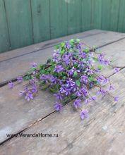 Травка с сиреневым цветением