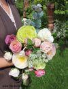 Интерьерные цветы премиум класса