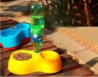 Кормушка для кошек и собак с автоматической подачей воды.