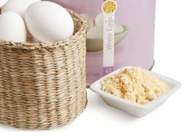 Яичный протеин 80% 1кг (Роскар)