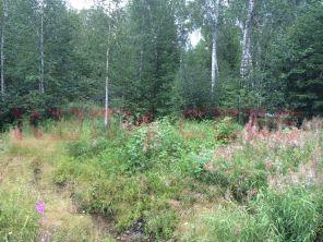 Земельный участок 40 соток на 21 км. от Иркутска Голоустненского тракта