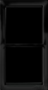 "Двухпостовая вертикальная рамка черная матовая CGSS ""Практика"" PL-VP102-BCM"