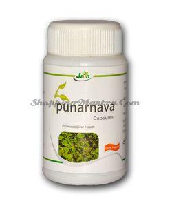 Пунарнава против инфекций мочевыводящих путей Джайн Аюрведик |Jain Ayurvedic Punarnava Capsules
