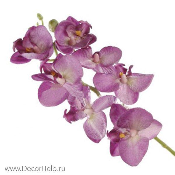 Орхидея сиреневая (10шт) арт: DCF006