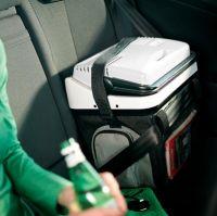 Термоэлектрический автохолодильник Waeco BordBar AS 25