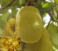 Jackfruit Flavor. Объем 5 мл.