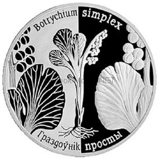 1 рубль Республики Беларусь 2014 года. Гроздовник простой