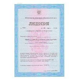 Лицензия на программу RealVisor (Акция)
