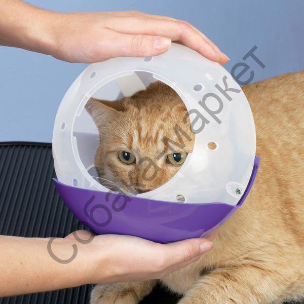 Намордник для кота своими руками из бутылки 51