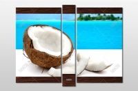 modulnaya-kartina-kokos