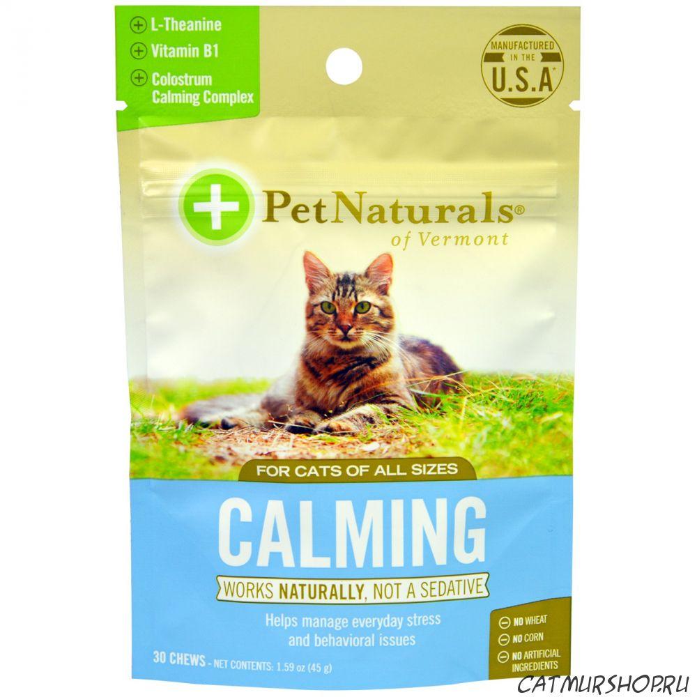 Корм Брит (Brit, Brit Care) для кошек | состав, цена, отзывы