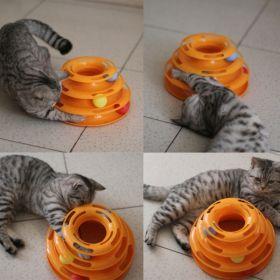 "Игрушка для кошек - трек ""PETSTAGES"""