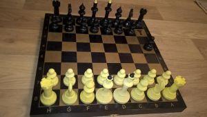 Шахматы гроссмейстерские тонированные