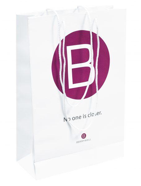 paper bag/paperipussi