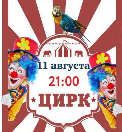 2017-08-11 Цирковое шоу