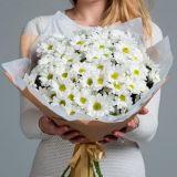 Букет цветов Хризантема кустовая