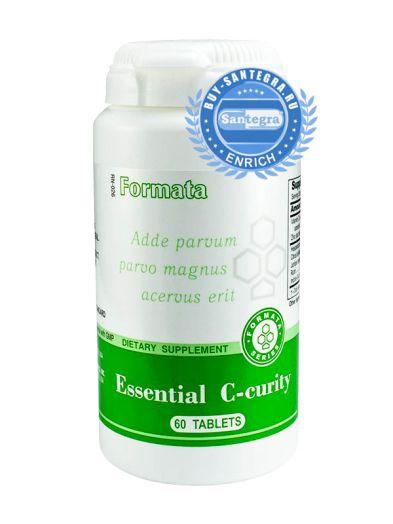 Essential C-curity (Исеншл Си-кьюрити)