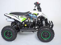 MOTAX Gekkon 70 сс Квадроцикл бензиновый бело-зеленый вид 5