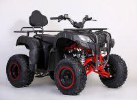 MOTAX ATV Grizlik 200 сс вид 6