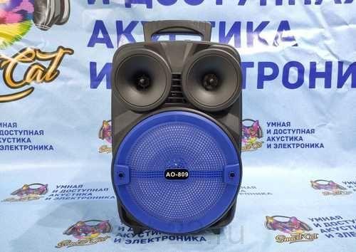 Активная колонка, аккумуляторная AO-809 (пульт, проводной микрофон)