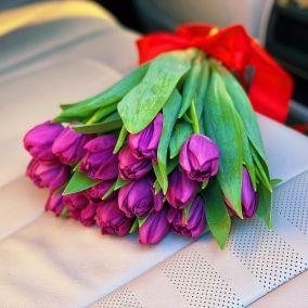 Тюльпан сиреневый пионовидный
