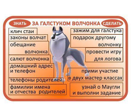 Карточки волчат (Скауты столицы)