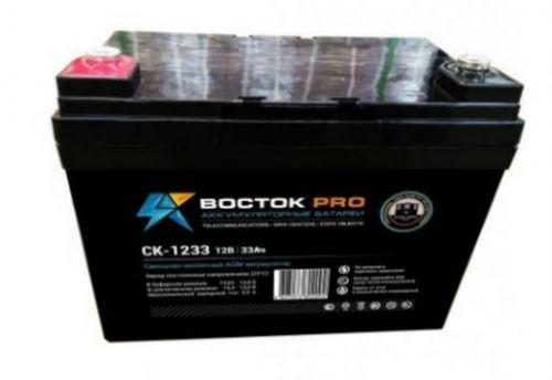 Аккумуляторная батарея СК 1233