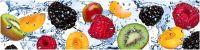 Кухонный фартук AG 11 -Фрукты в воде еда