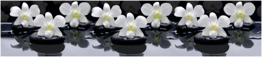 Кухонный фартук TOP 92 - Белые орхидеи на черных камнях