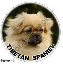 Тибетский спаниель наклейка Великобритания