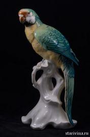 Попугай ара на ветке. Karl Ens, Германия. 1950-60е