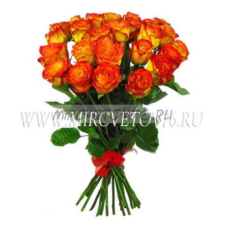 Букет Рыжик 21 роза