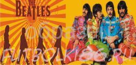 Кружка с изображением Рок-музыкантов. арт.400