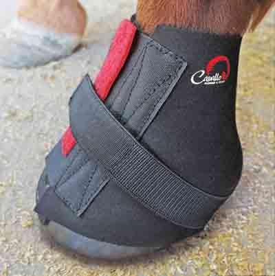 Носки для  лошадиных ботинок  Delta. Пара.