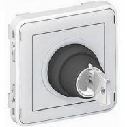 Выключатель с ключом Plexo 10А IP20 серый (арт.69706)