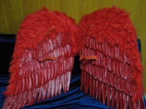 Крылья перьевые 92 см красные