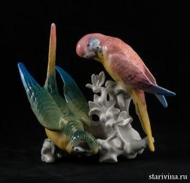 Волнистые попугайчики, Karl Ens, Германия, 1920-30 гг