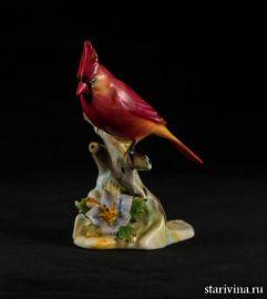 Птица Кардинал, миниатюра, Royal Adderley, Англия, сер. 20 века