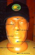 Бейсболка 14 ПОГО Барс