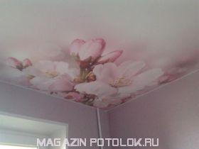 Фотопечать на матовом натяжном потолке