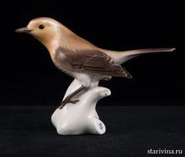 Птичка-малиновка, Nymphenburg, Германия, сер. 20 века