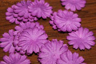 Ромашки фиолетовые (маленькие)
