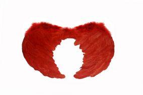 Крылья ангела красные большие