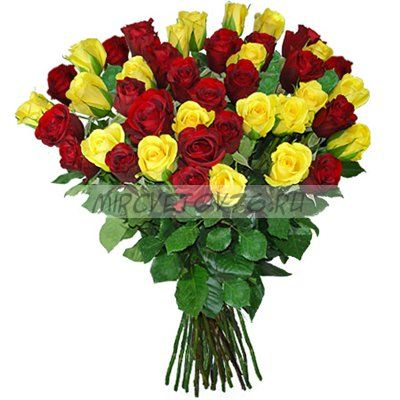 "Букет ""51 красно-желтая роза"""