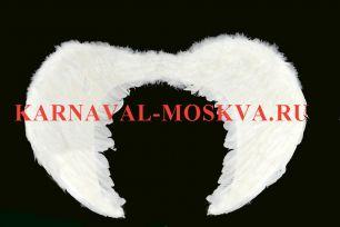 Крылья ангела большие