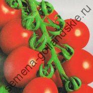 """Томат сорт """"ПРИНЦИП БОРГЕЗЕ"""" (Principe Borghese) 10 семян"""
