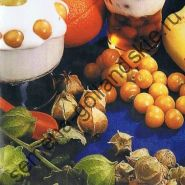 "Томатилло сорт ""АНАНАСКЕРС"" (Tomatillo Ananaskers) 10 семян"