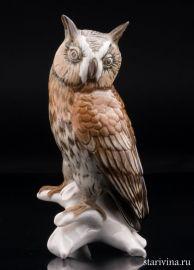 Ушастая сова, Karl Ens, Германия